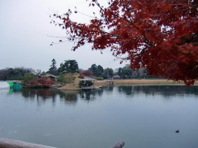 058岡山城20101130 CIMG5584