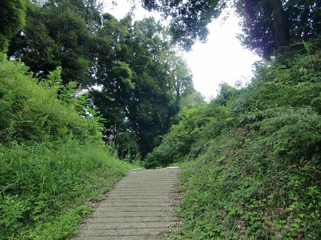 050本佐倉城20120907 CIMG3185