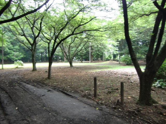 234久下田城20100626 CIMG7280