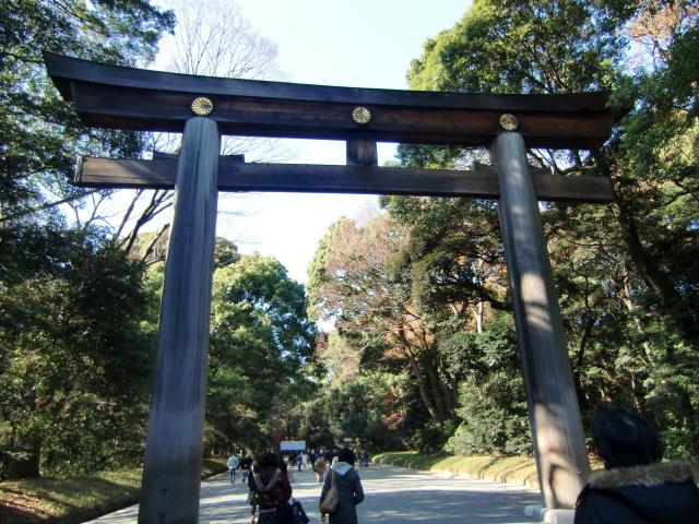 1305彦根藩下屋敷20101212 CIMG5785