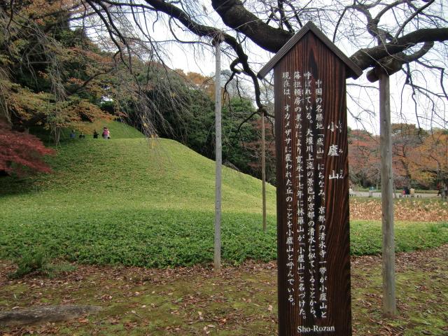 1306水戸藩上屋敷20101121 CIMG4256