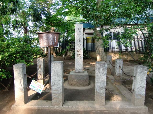 049志村城20110430 CIMG7595