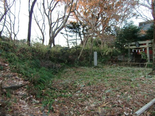 028二俣城20110110 CIMG7019