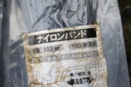 P1170418
