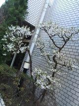 2015-03-25-09-58-01