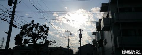 逆光シーン@エクスぺリアZ1カメラ