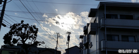 逆光シーン@GALAXY S5カメラ