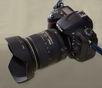 24-120mm_w/D600
