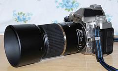 Nikon_Df+Tamron_90mm