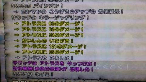 DSC_0221(1)