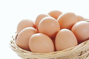 1週間に卵を3個以上食べると早死にする 米研究