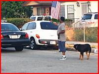 痛いニュース(ノ∀`) : 【動画】 スマフォで警察を撮影していた男の飼い犬が射殺される - ライブドアブログ