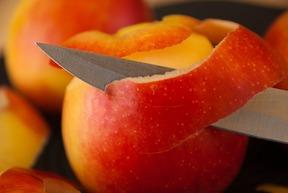 老夫婦「果物食べるためにナイフ持ってきた」 車掌「通報!通報!」 → 新幹線15分停止