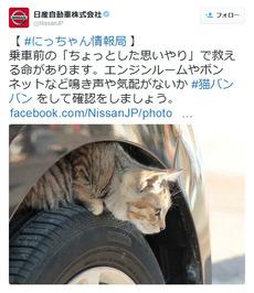 痛いニュース(ノ∀`) : 日産が乗車前の「猫バンバン」を呼びかけ…エンジンルームやボンネットに猫が入り込む季節 - ライブドアブログ