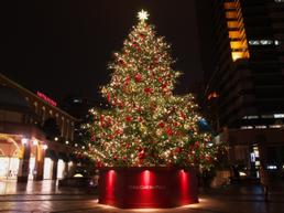 韓国メディア「クリスマスツリーは韓国起源。ロイヤリティーの一切も払わないまま使われている」