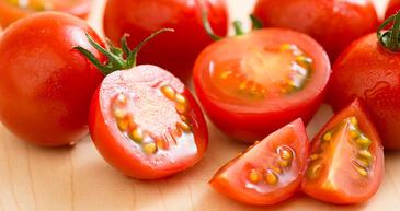tomato_photo1