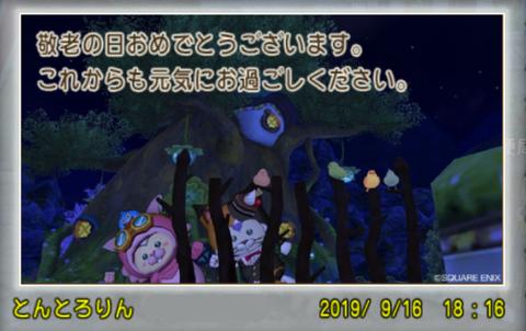 2019-09-16 (158)