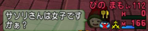 2020-03-03 (13)