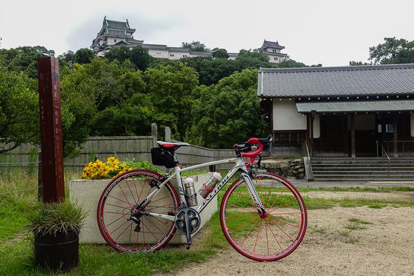 和歌山城に行ってきました