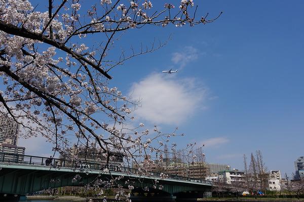 桜ノ宮で3