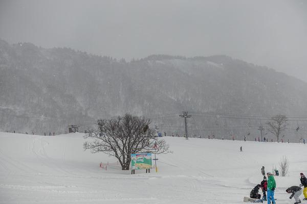 雪降りしきるゲレンデ