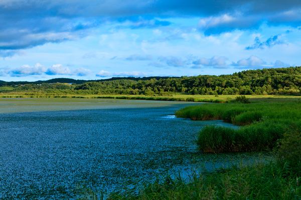 釧路湿原 ~広い空のある風景
