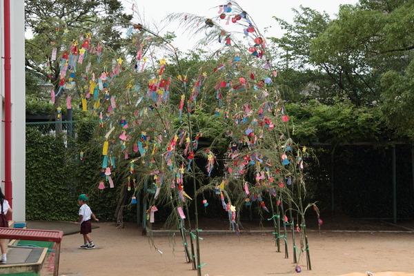 Sports Club on Tanabata