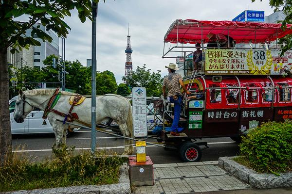 テレビ塔と馬車