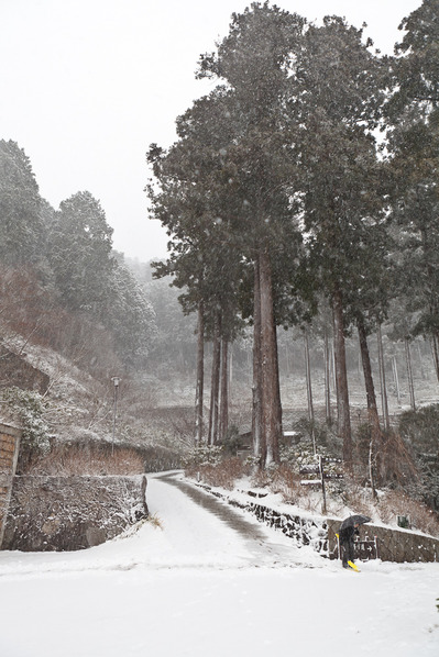 雪の積もった下山口