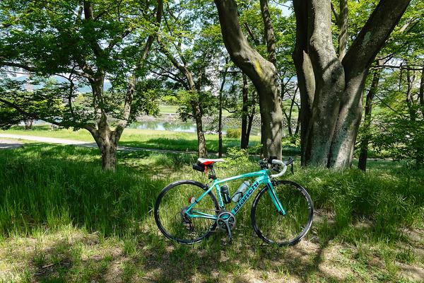石川河川敷の木陰で