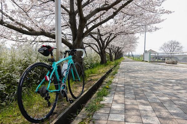 石川サイクル橋で2