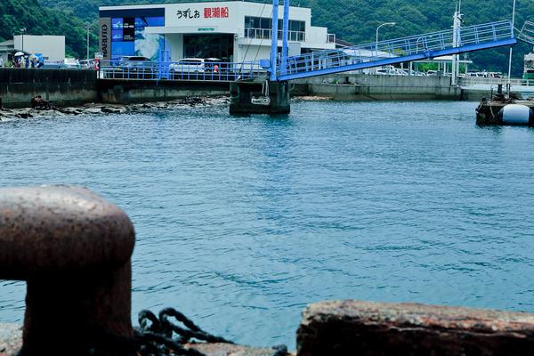Pier of Tour Boat