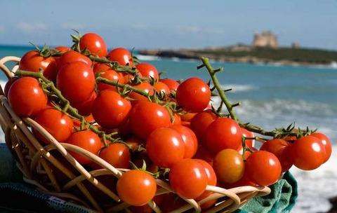 「16世紀まで存在しなかったトマトがイタリア料理で不可欠になったのは何故なのか」海外の反応