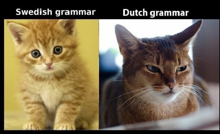 左:スウェーデン語の文法 ...