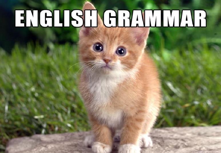 文法難易度を基準に各言語を ...
