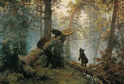 Utro_v_sosnovom_lesu