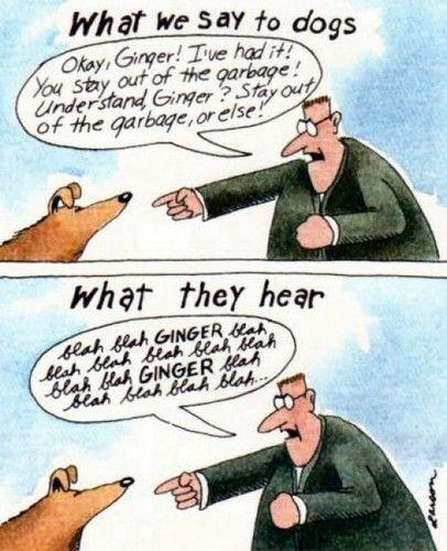 gary-larson-far-ginger