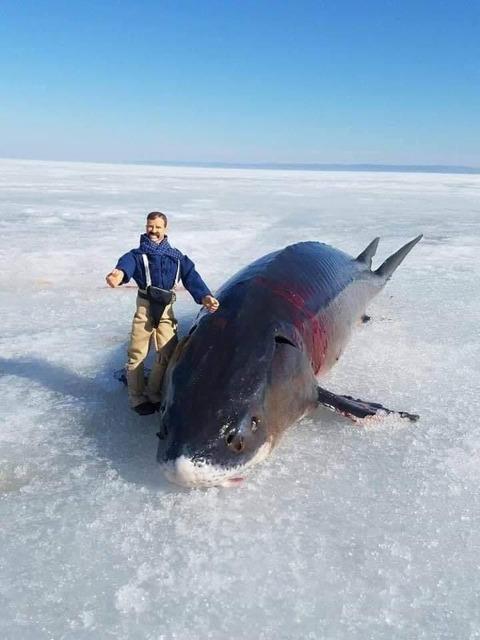 外国人「釣りに行くときはフィギュアを持って行くと良い」海外の反応