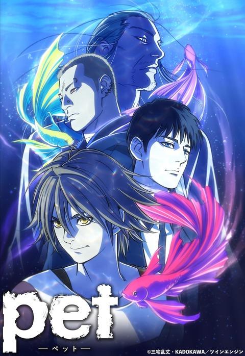pet_anime_visual
