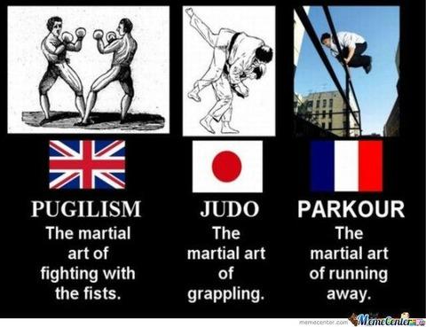 「世界の国の武術。英国はボクシング、日本は柔道。フランスは・・・」海外の反応