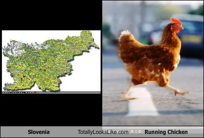 slovenia-totally-looks-like-a-running-chicken