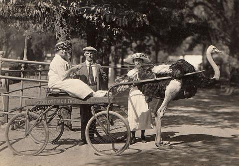 外国人「100年前(1919年)の様子が窺える画像を貼っていく」海外のまとめ