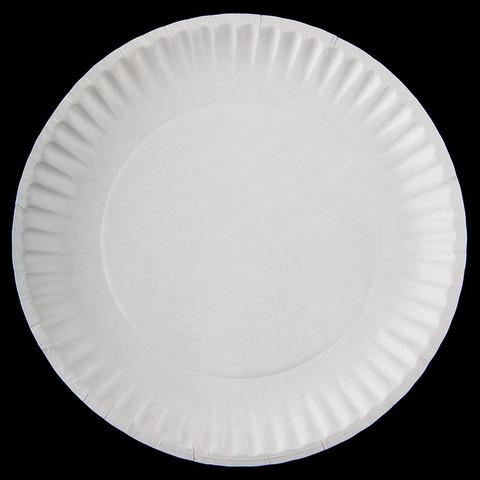 9-white-economy-paper-plate-1000-case
