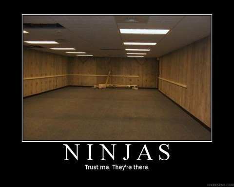 ninjas-demotivational-invisible