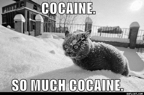 Cocaine_So_Much_Cocaine