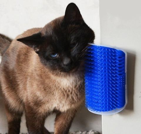 self-grooming-station