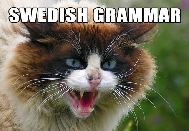 スウェーデン語の文法」