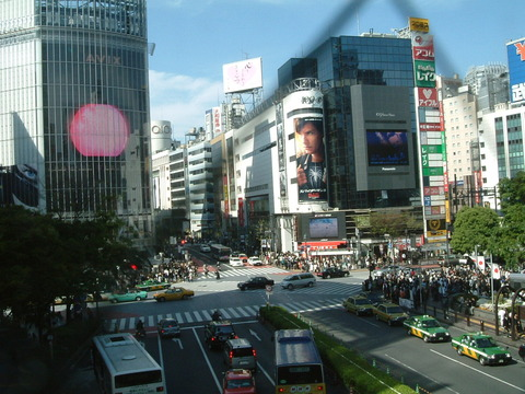 Shibuya-Crossing-1