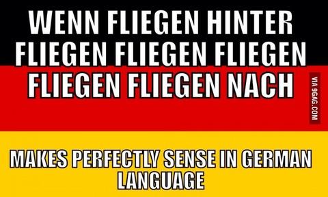 外国人「世界よ、これが仏語、独語、ハンガリー語の文法的に正しい文章だ」海外の反応