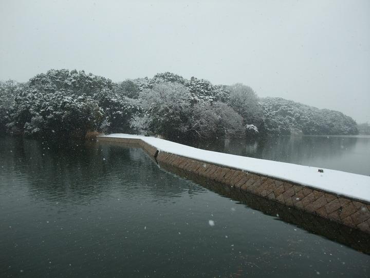 河内大塚山 北西から雪化粧 (大)